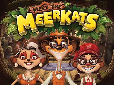 Screenshot website Meet the Meerkats