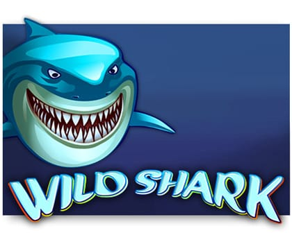 Screenshot website Wild Shark